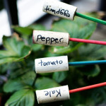 DIY: Plant Markers for you Garden