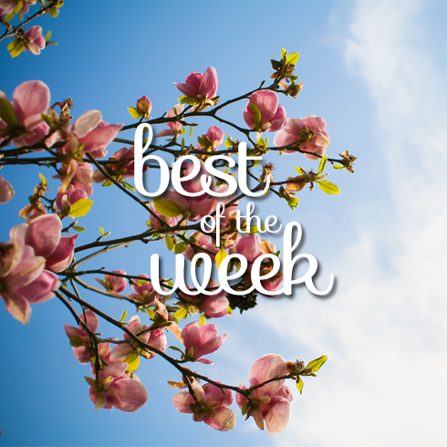 Best-of-the-Week-May-9
